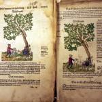 Trešā (1551) un ceturtā (1565) izdevuma salīdzinājums
